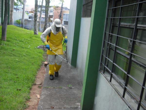 Dedetizadora Porto Alegre (10)
